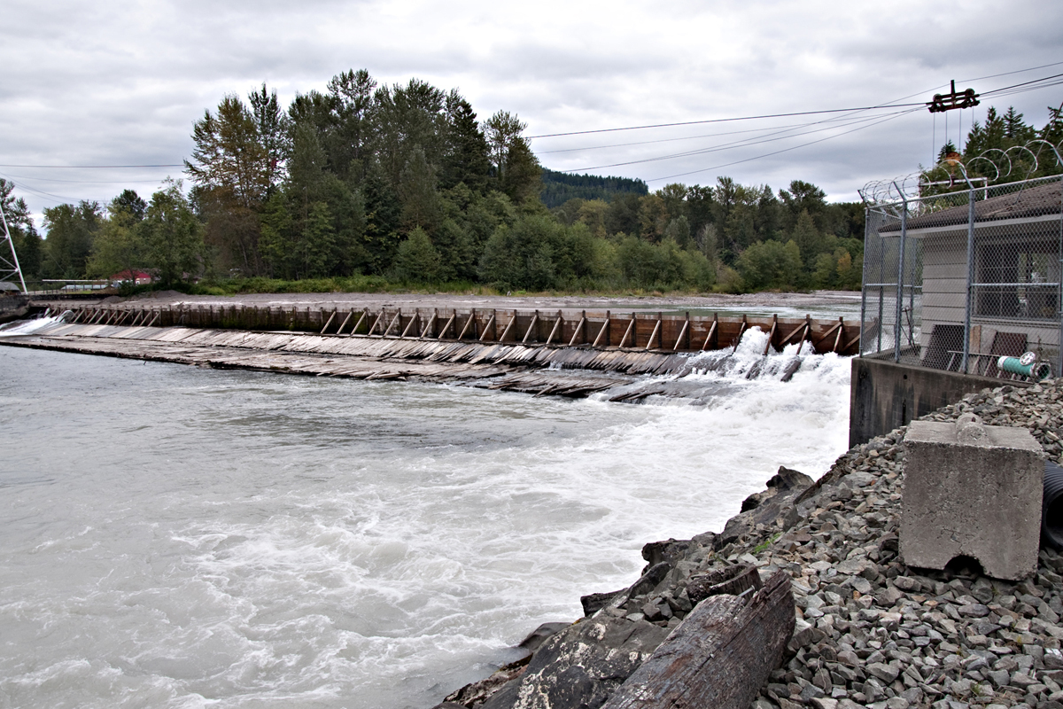 Seattle district missions civil works programs and for Dam fish count